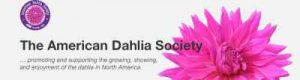 This is an image of our sponsor, The American Dahlia Society.